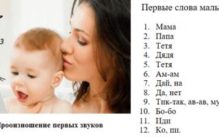 Первые слова ребенка в каком возрасте дети начинают говорить осознанно, предложениями