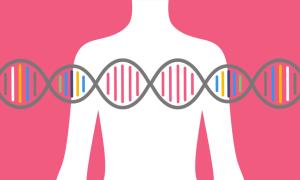 Анализ на гены рака молочной железы brca1 и brca2