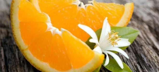 Апельсиновая диета для похудения или можно ли похудеть на апельсинах