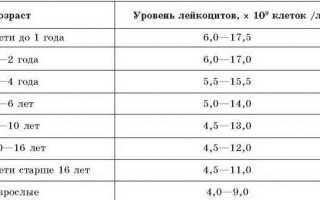 Капризы у ребенка в год 15 2 3 4 года