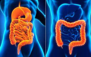 Кишечные инфекции у взрослых и детей