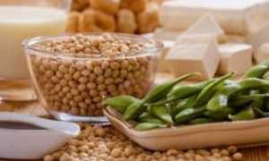 Фитоэстрогены в травах и продуктах питания для женщин