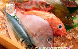 Во сколько можно давать рыбу малышу: когда и какую рыбу начинать давать ребенку