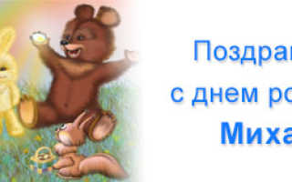 Поздравления с днём рождения миша