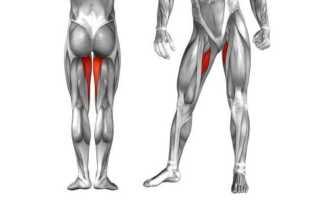 Как убрать жир с ляшек между ног: секреты быстрого похудения ляшек