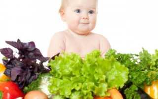 Чем можно кормить малыша в 7 месяцев или какие должны быть основные продукты в рационе семимесячного ребенка