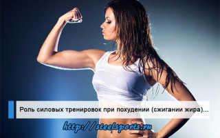 Силовые тренировки для похудения: программа, правила и советы