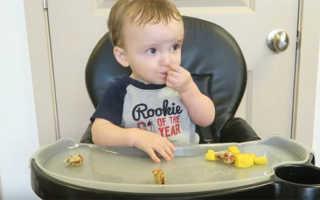 Чем можно кормить 10 месячного малыша