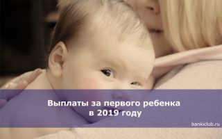 Сколько дают за первого ребенка или какие выплаты положены на детей