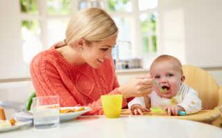 Какой выбрать стульчик для кормления малыша — советы по выбору