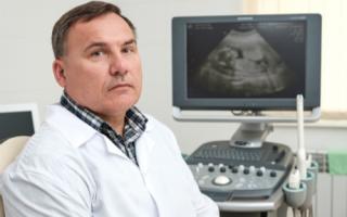 Первые три месяца беременности