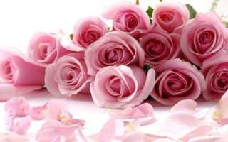 Поздравляю с днём рождения женщине в стихах