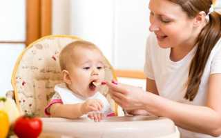 Что можно давать малышу в 7 месяцев или что нужно есть семимесячному ребенку: какие фрукты и овощи давать, как расширить рацион