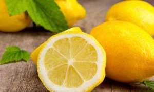 Лимонная диета для похудения: преимущества, недостатки, рецепты и отзывы