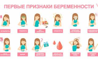 На каком сроке беременности начинается шевеление ребенка