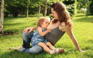 Сколько нужно кормить ребенка грудным молоком и нужно ли кормить грудью долго