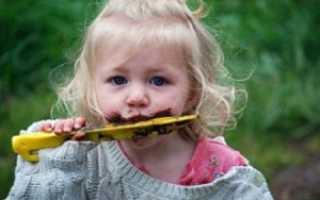 Аллотриофагия (поедание несъедобных веществ) как один из видов пищевых расстройств