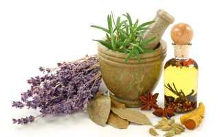 Какие травы принимать для похудения