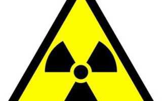 Какие продукты выводят радиацию из организма