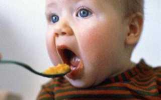 С какого возраста можно давать хурму малышу или со скольки месяцев можно давать ребенку хурму?