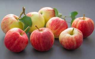 С какого месяца можно давать яблоко грудничкам или когда и сколько давать яблок малышу, в каком виде а также польза и вред