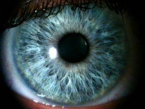 Какой цвет глаз будет у ребенка: как передается от родителей, схема определения цвета